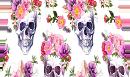 Шаловливые черепушки