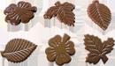 Шоколадный гербарий