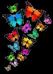 Фейерверк из бабочек