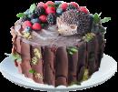 Тортик от ёжика