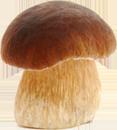 Гр-гр-гриб